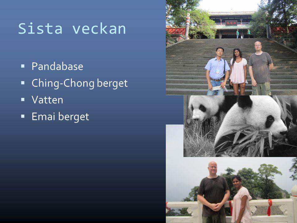 Sista veckan  Pandabase  Ching-Chong berget  Vatten  Emai berget