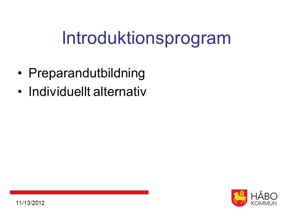 11/13/2012 Introduktionsprogram •Preparandutbildning •Individuellt alternativ