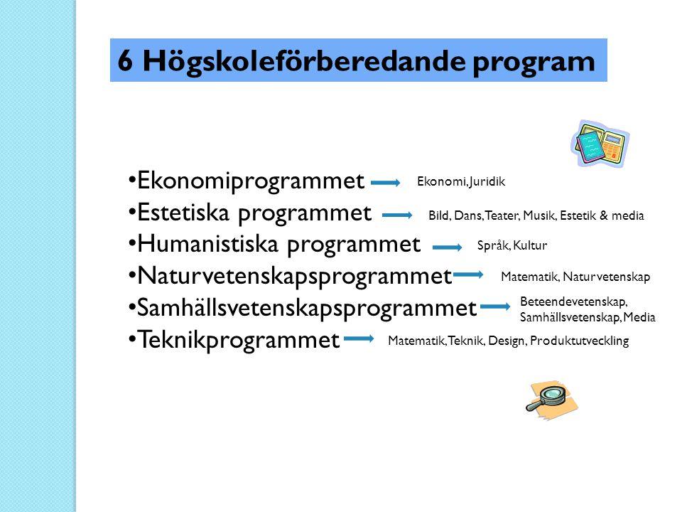 • Ekonomiprogrammet • Estetiska programmet • Humanistiska programmet • Naturvetenskapsprogrammet • Samhällsvetenskapsprogrammet • Teknikprogrammet 6 H