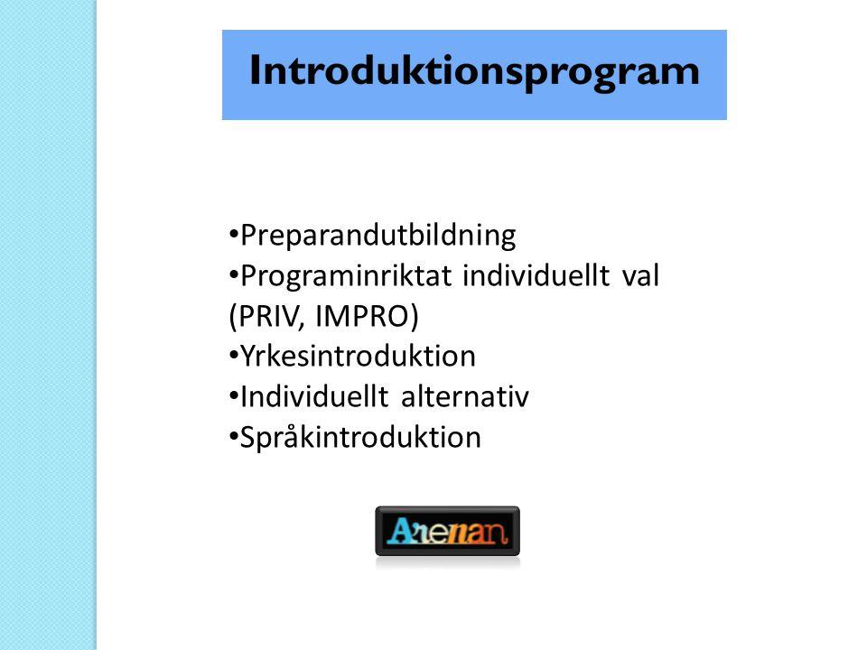 • Preparandutbildning • Programinriktat individuellt val (PRIV, IMPRO) • Yrkesintroduktion • Individuellt alternativ • Språkintroduktion