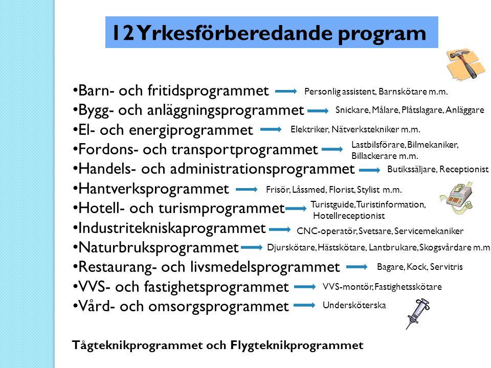 • Barn- och fritidsprogrammet • Bygg- och anläggningsprogrammet • El- och energiprogrammet • Fordons- och transportprogrammet • Handels- och administr