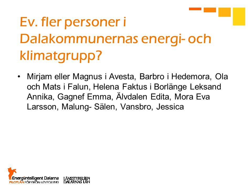 Ev. fler personer i Dalakommunernas energi- och klimatgrupp.