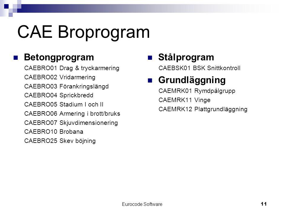 Eurocode Software11 CAE Broprogram  Betongprogram CAEBRO01 Drag & tryckarmering CAEBRO02 Vridarmering CAEBRO03 Förankringslängd CAEBRO04 Sprickbredd CAEBRO05 Stadium I och II CAEBRO06 Armering i brott/bruks CAEBRO07 Skjuvdimensionering CAEBRO10 Brobana CAEBRO25 Skev böjning  Stålprogram CAEBSK01 BSK Snittkontroll  Grundläggning CAEMRK01 Rymdpålgrupp CAEMRK11 Vinge CAEMRK12 Plattgrundläggning