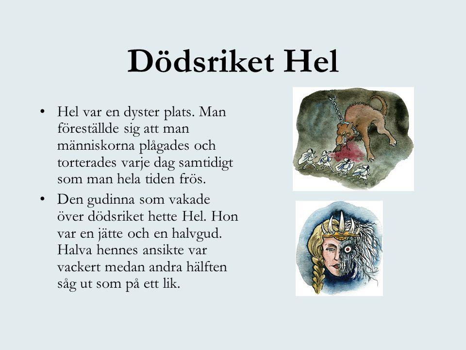 Dödsriket Hel •Hel var en dyster plats. Man föreställde sig att man människorna plågades och torterades varje dag samtidigt som man hela tiden frös. •