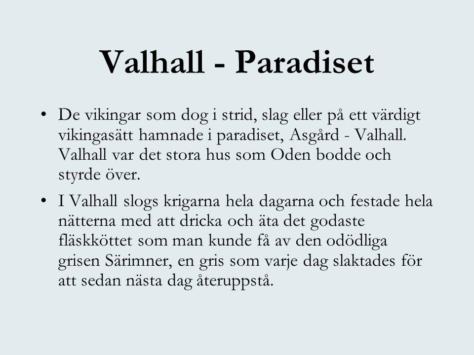 Valhall - Paradiset •De vikingar som dog i strid, slag eller på ett värdigt vikingasätt hamnade i paradiset, Asgård - Valhall. Valhall var det stora h