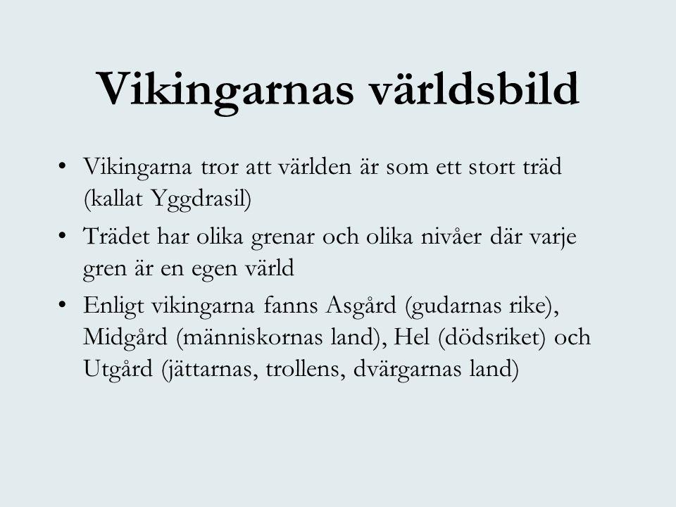 Vikingarnas världsbild •Vikingarna tror att världen är som ett stort träd (kallat Yggdrasil) •Trädet har olika grenar och olika nivåer där varje gren är en egen värld •Enligt vikingarna fanns Asgård (gudarnas rike), Midgård (människornas land), Hel (dödsriket) och Utgård (jättarnas, trollens, dvärgarnas land)