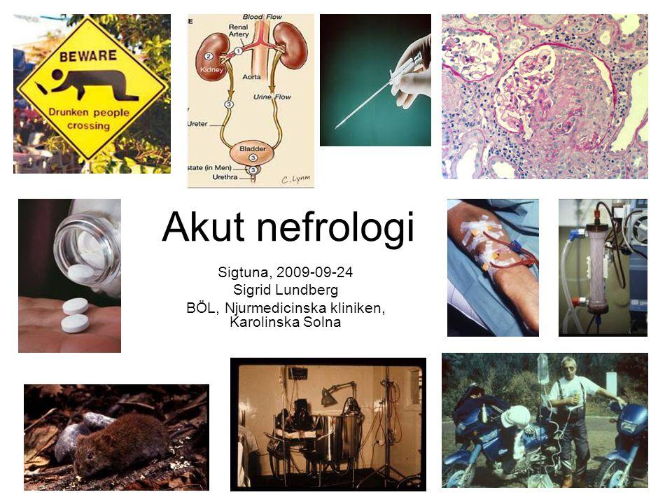 Orsaker till etablerad ARF Renal ARF Postrenal ARF Akut tubulär nekros (ATN) ATN beror ofta på multipla orsaker: • Blodtrycksfall ca.