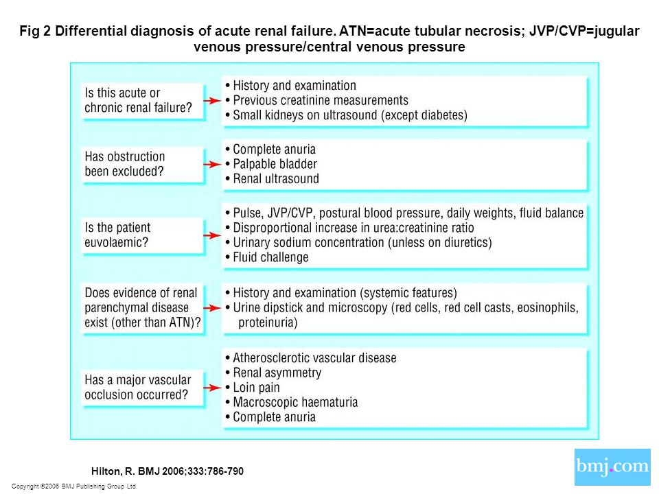 Copyright ©2006 BMJ Publishing Group Ltd. Hilton, R. BMJ 2006;333:786-790 Fig 2 Differential diagnosis of acute renal failure. ATN=acute tubular necro