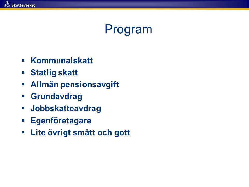 Program  Kommunalskatt  Statlig skatt  Allmän pensionsavgift  Grundavdrag  Jobbskatteavdrag  Egenföretagare  Lite övrigt smått och gott