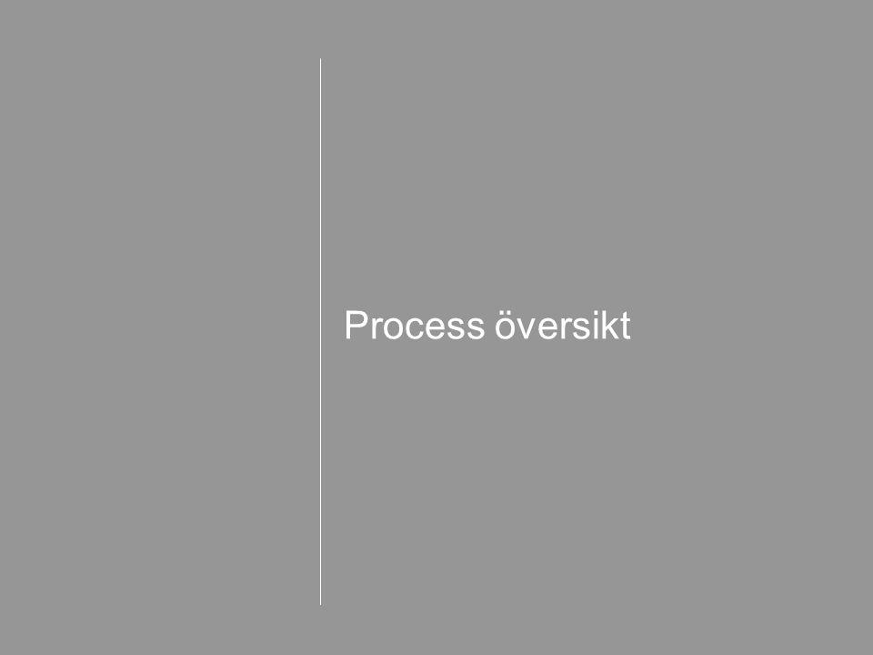 Process översikt