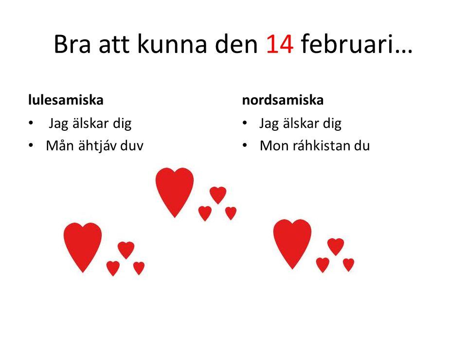 Bra att kunna den 14 februari… lulesamiska • Jag älskar dig • Mån ähtjáv duv nordsamiska • Jag älskar dig • Mon ráhkistan du