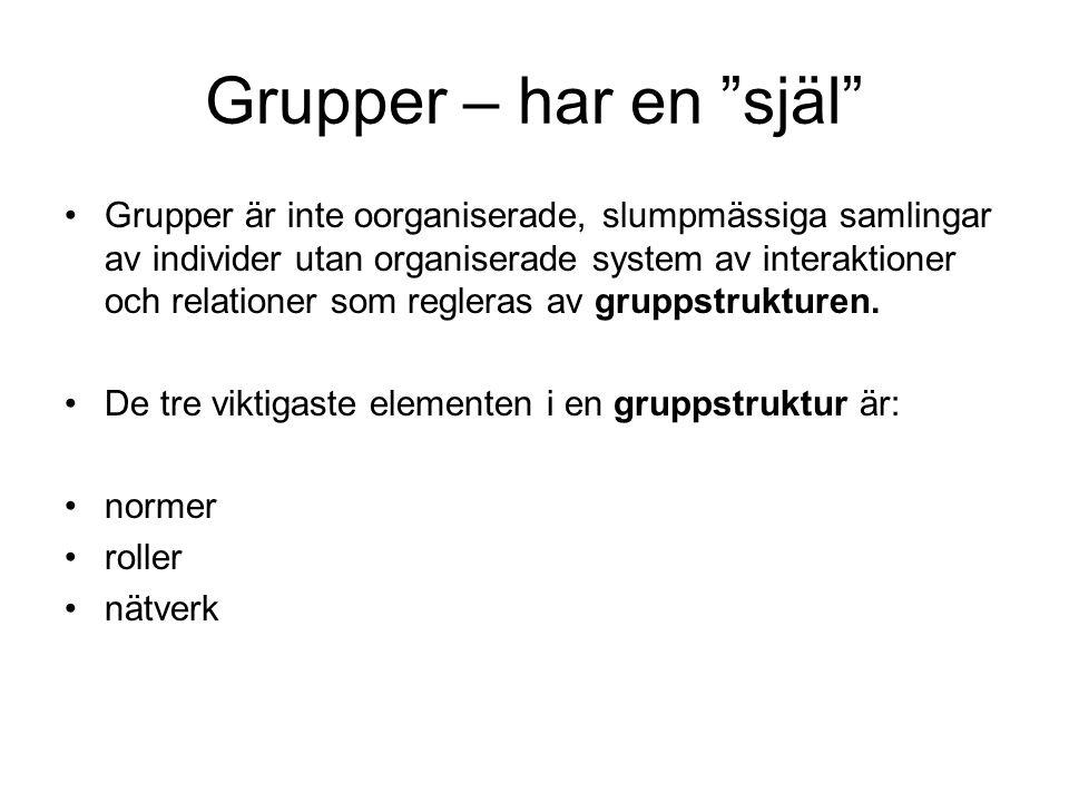 """Grupper – har en """"själ"""" •Grupper är inte oorganiserade, slumpmässiga samlingar av individer utan organiserade system av interaktioner och relationer s"""