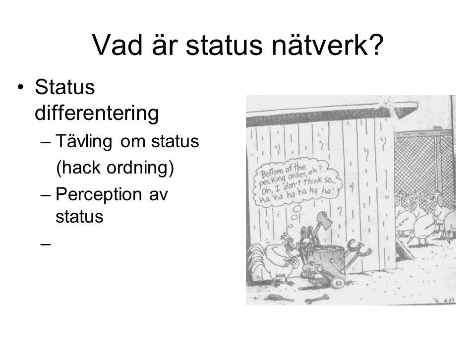 Vad är status nätverk? •Status differentering –Tävling om status (hack ordning) –Perception av status –