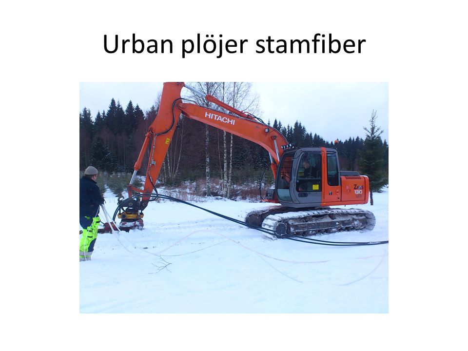 Urban plöjer stamfiber