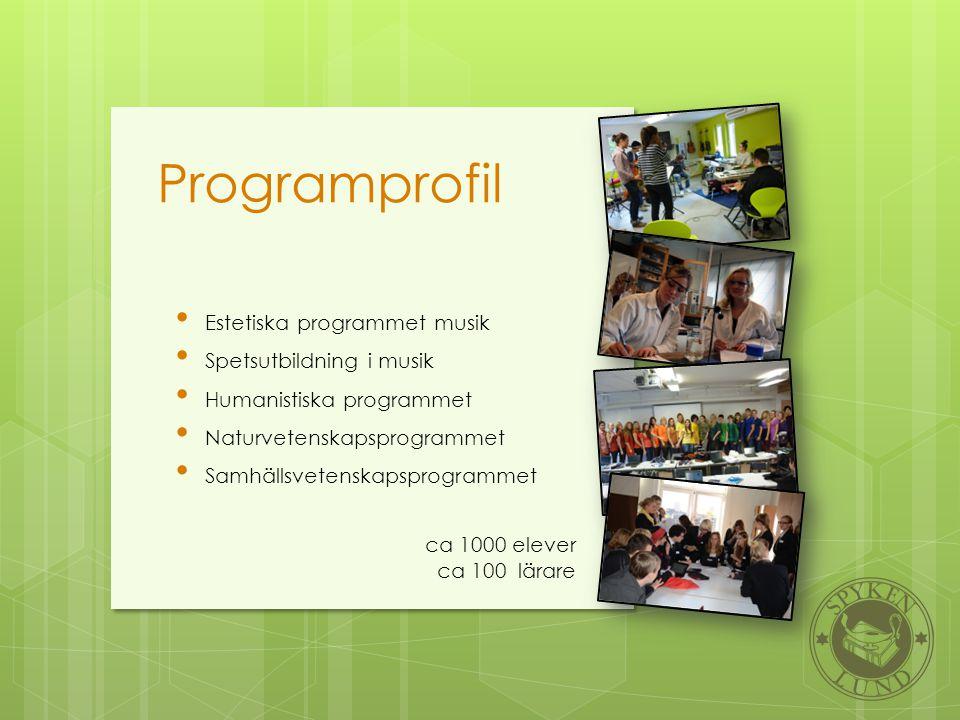 Programprofil • Estetiska programmet musik • Spetsutbildning i musik • Humanistiska programmet • Naturvetenskapsprogrammet • Samhällsvetenskapsprogram