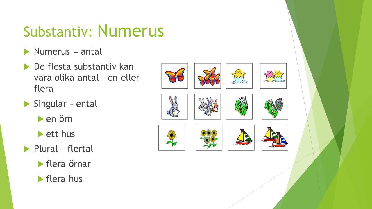 Substantiv: Numerus  Numerus = antal  De flesta substantiv kan vara olika antal – en eller flera  Singular – ental  en örn  ett hus  Plural – fl