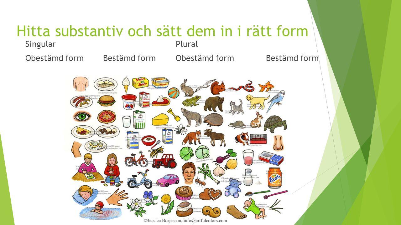 Hitta substantiv och sätt dem in i rätt form SingularPlural Obestämd form Bestämd formObestämd form Bestämd form