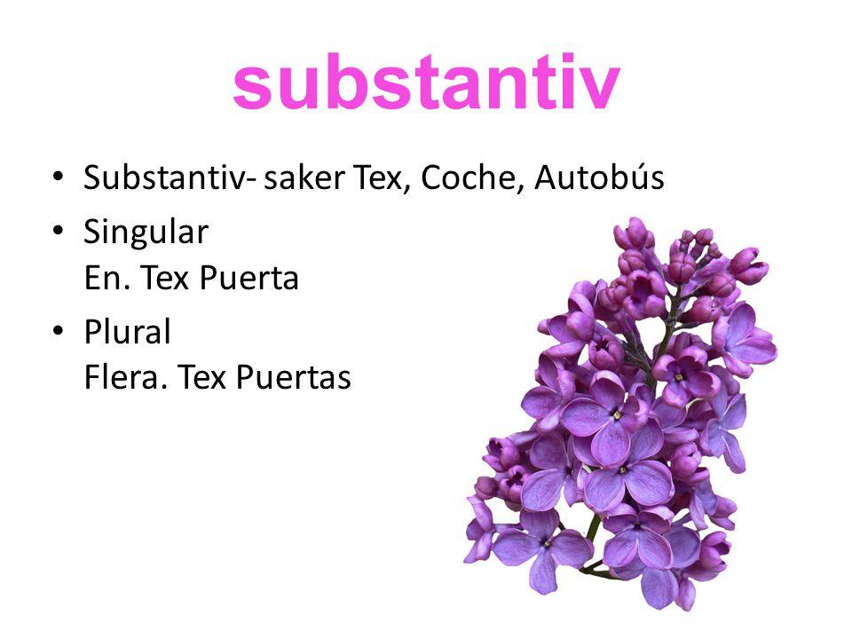 substantiv • Substantiv- saker Tex, Coche, Autobús • Singular En.