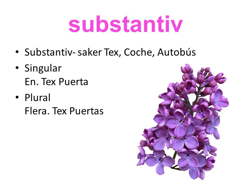 substantiv • Substantiv- saker Tex, Coche, Autobús • Singular En. Tex Puerta • Plural Flera. Tex Puertas