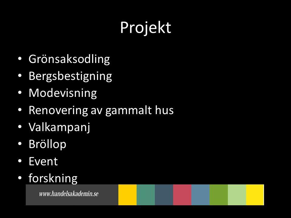 Projekt • Grönsaksodling • Bergsbestigning • Modevisning • Renovering av gammalt hus • Valkampanj • Bröllop • Event • forskning