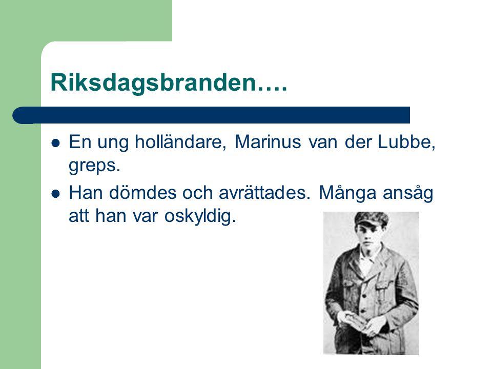Riksdagsbranden….  En ung holländare, Marinus van der Lubbe, greps.  Han dömdes och avrättades. Många ansåg att han var oskyldig.