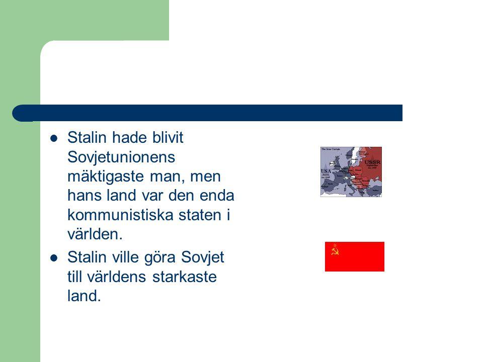 SStalin hade blivit Sovjetunionens mäktigaste man, men hans land var den enda kommunistiska staten i världen. SStalin ville göra Sovjet till värld