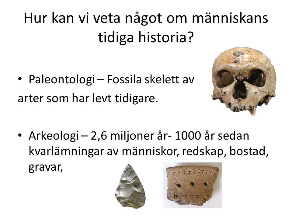 Hur kan vi veta något om människans tidiga historia? • Paleontologi – Fossila skelett av arter som har levt tidigare. • Arkeologi – 2,6 miljoner år- 1