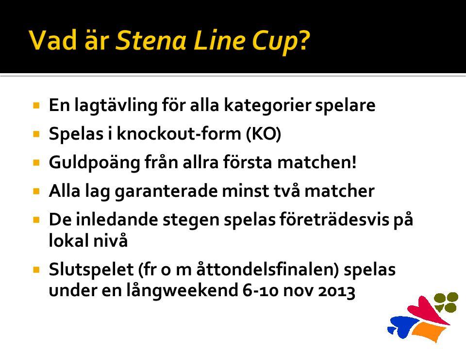  En lagtävling för alla kategorier spelare  Spelas i knockout-form (KO)  Guldpoäng från allra första matchen.