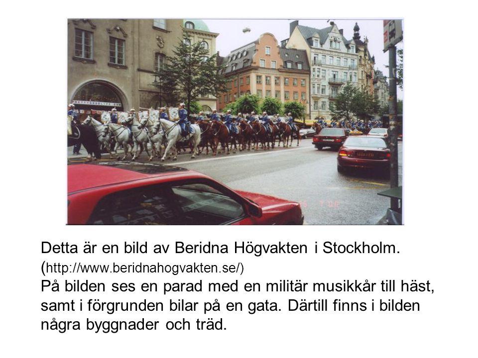 Detta är en bild av Beridna Högvakten i Stockholm. ( http://www.beridnahogvakten.se/) På bilden ses en parad med en militär musikkår till häst, samt i