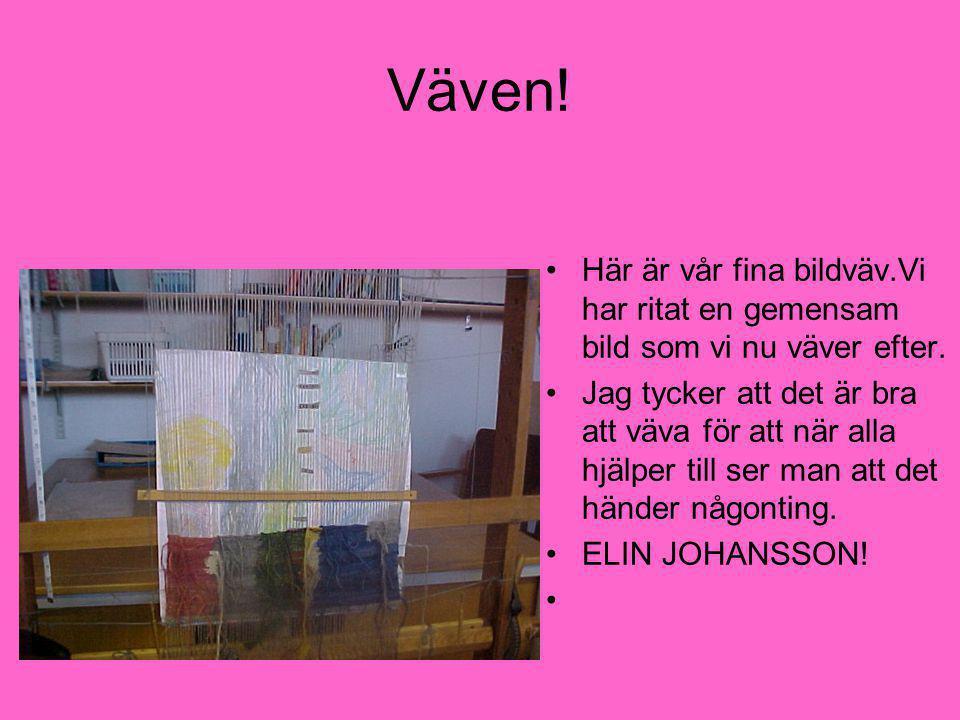 FINA SPIKEN •Sven smider en spik till mig.