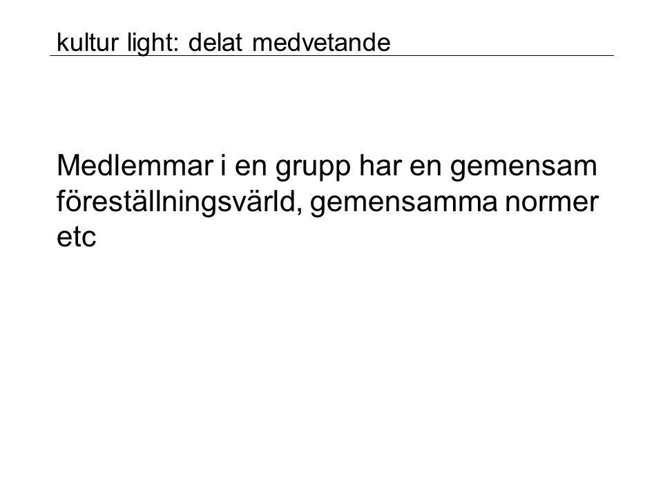 kultur light: delat medvetande Medlemmar i en grupp har en gemensam föreställningsvärld, gemensamma normer etc
