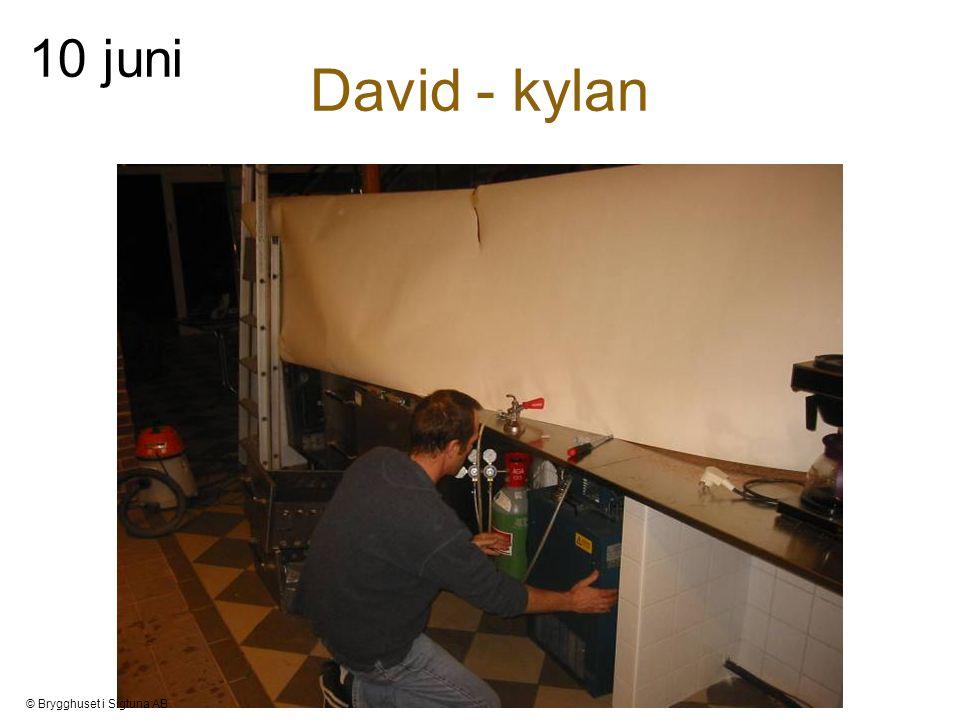David - kylan 10 juni © Brygghuset i Sigtuna AB