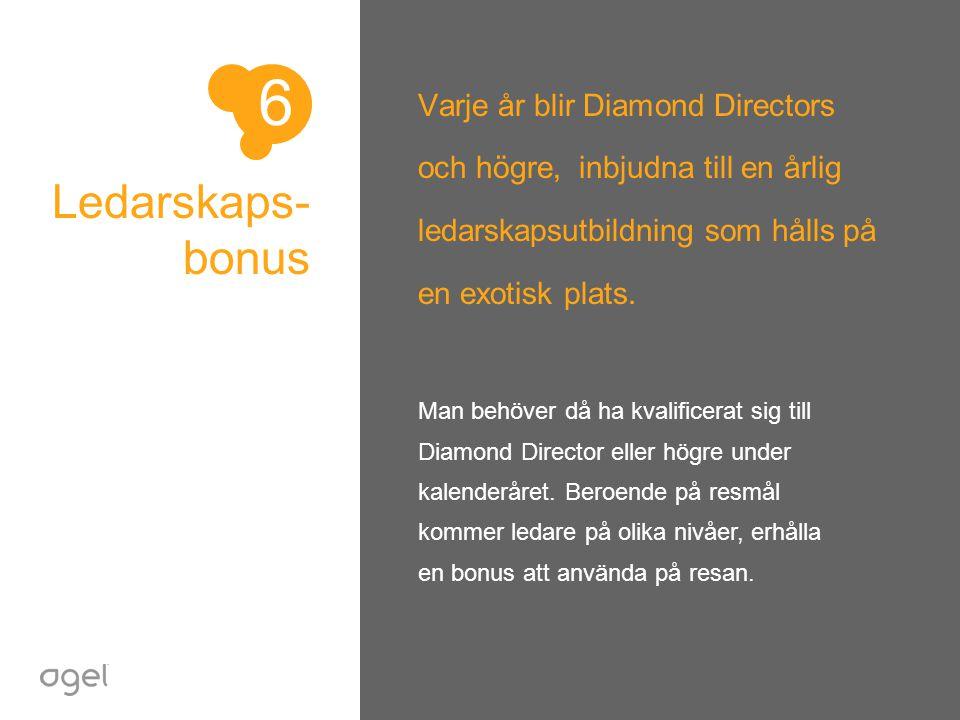 Ledarskaps- bonus Varje år blir Diamond Directors och högre, inbjudna till en årlig ledarskapsutbildning som hålls på en exotisk plats. Man behöver då
