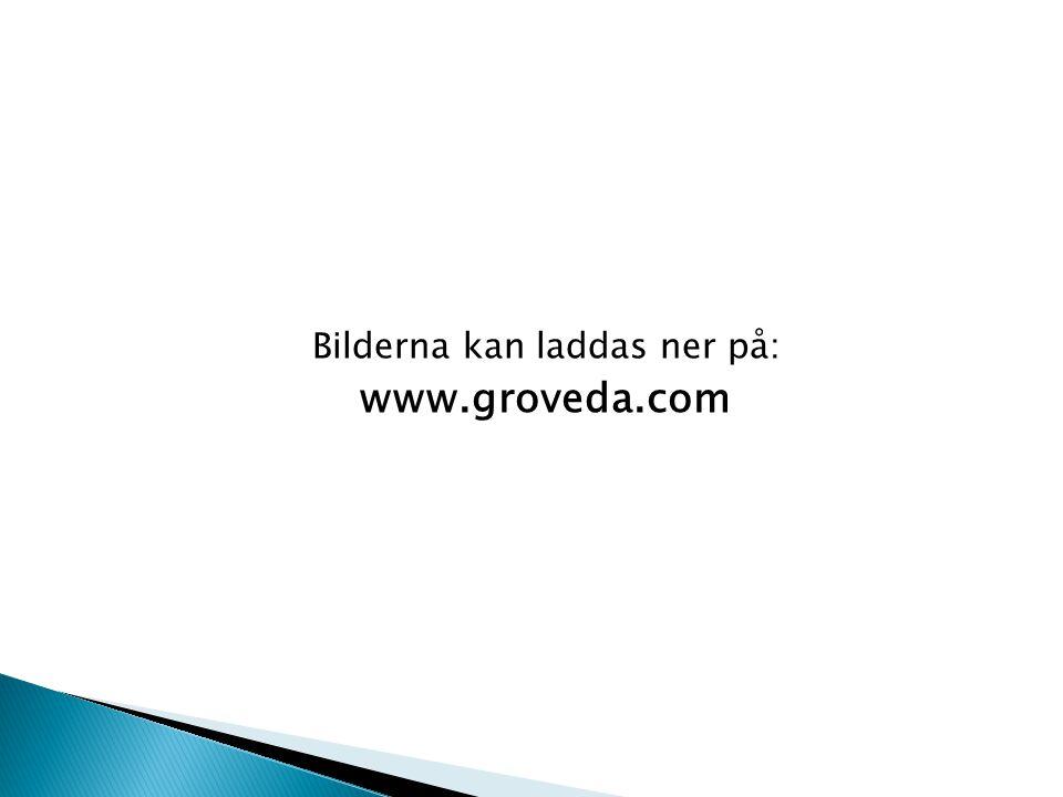 Bilderna kan laddas ner på: www.groveda.com