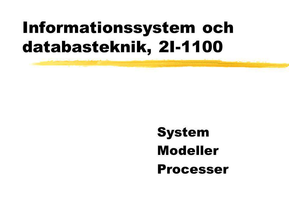 Informationssystem och databasteknik, 2I-1100 System Modeller Processer
