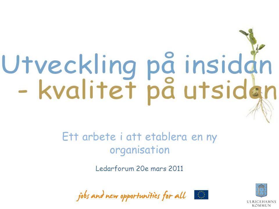 Ett arbete i att etablera en ny organisation Ledarforum 20e mars 2011