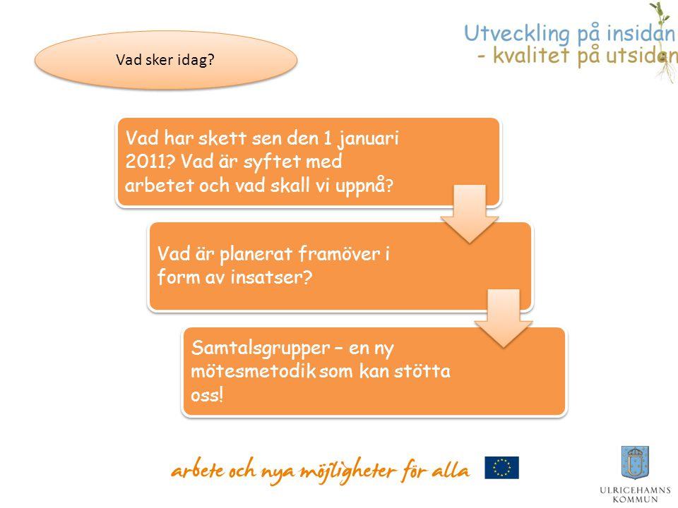 Vad har skett sen den 1 januari 2011? Vad är syftet med arbetet och vad skall vi uppnå ? Vad är planerat framöver i form av insatser? Samtalsgrupper –