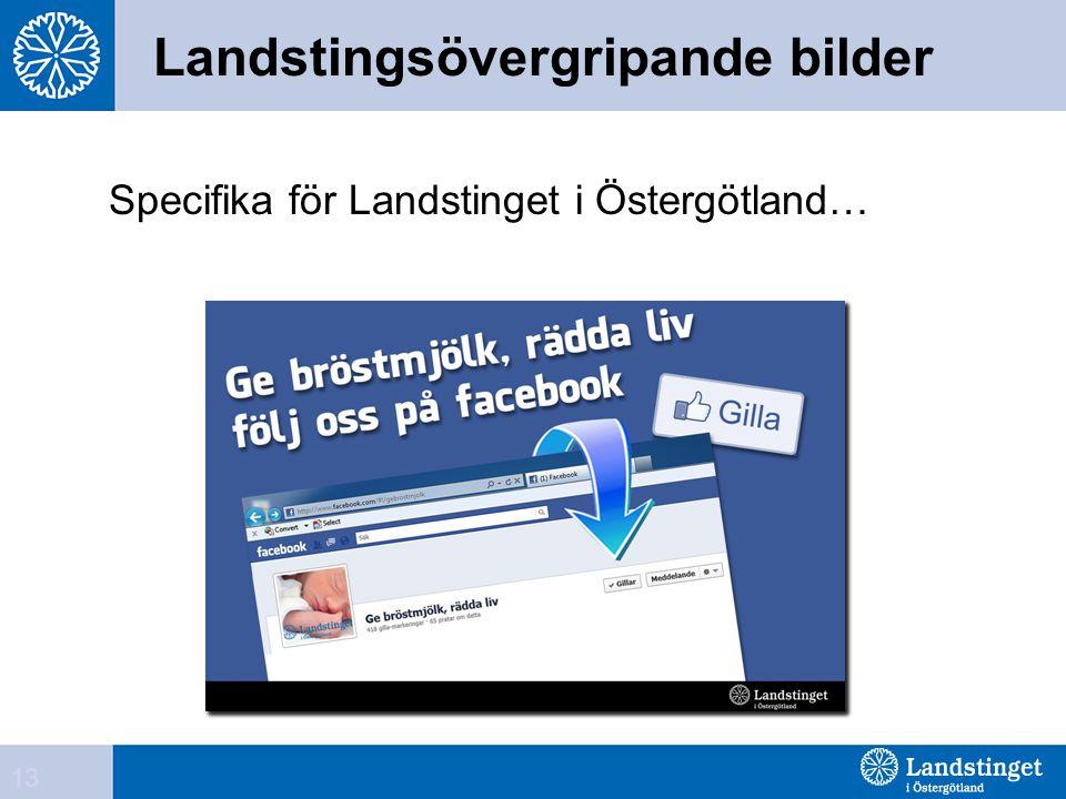 Landstingsövergripande bilder Specifika för Landstinget i Östergötland… 13