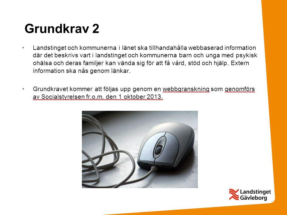 Grundkrav 2 •Landstinget och kommunerna i länet ska tillhandahålla webbaserad information där det beskrivs vart i landstinget och kommunerna barn och