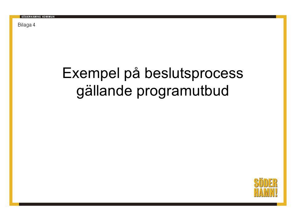 Exempel på beslutsprocess gällande programutbud Bilaga 4