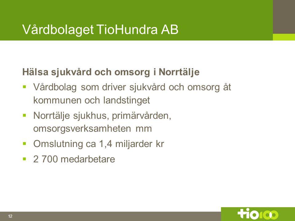 12 Vårdbolaget TioHundra AB Hälsa sjukvård och omsorg i Norrtälje  Vårdbolag som driver sjukvård och omsorg åt kommunen och landstinget  Norrtälje sjukhus, primärvården, omsorgsverksamheten mm  Omslutning ca 1,4 miljarder kr  2 700 medarbetare