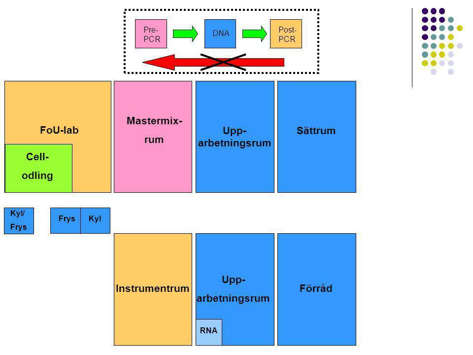 Upp- arbetningsrum Sättrum Mastermix- rum Upp- arbetningsrum Instrumentrum FrysKyl Pre- PCR DNA Post- PCR RNA FoU-lab Cell- odling Kyl/ Frys Förråd Sä