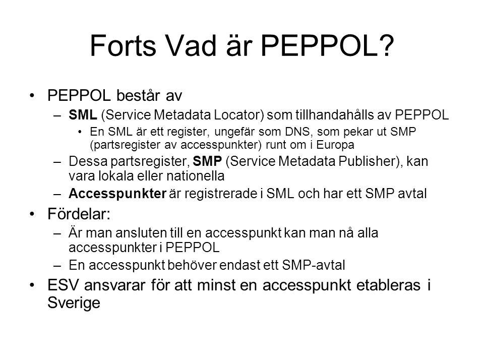 Forts Vad är PEPPOL? •PEPPOL består av –SML (Service Metadata Locator) som tillhandahålls av PEPPOL •En SML är ett register, ungefär som DNS, som peka