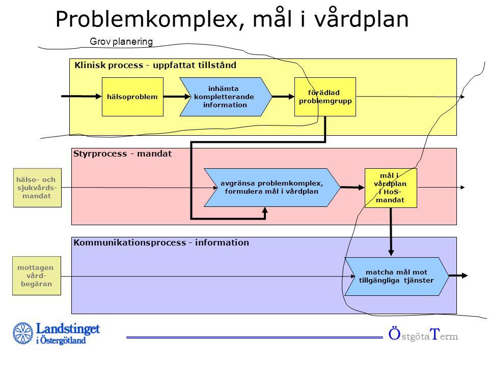 Ö stgöta T erm Problemkomplex, mål i vårdplan inhämta kompletterande information förädlad problemgrupp avgränsa problemkomplex, formulera mål i vårdpl