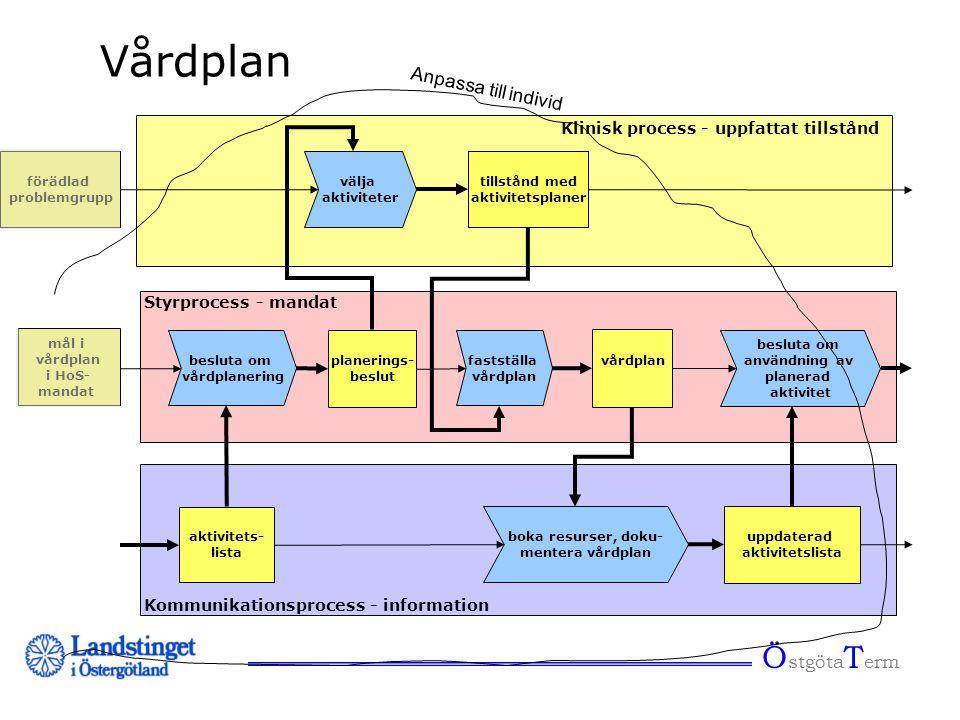 Ö stgöta T erm Vårdplan välja aktiviteter besluta om vårdplanering planerings- beslut Klinisk process - uppfattat tillstånd Styrprocess - mandat Kommu