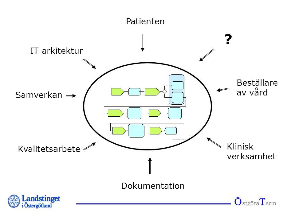 Ö stgöta T erm Process Patienten ? Beställare av vård Klinisk verksamhet Dokumentation Kvalitetsarbete Samverkan IT-arkitektur