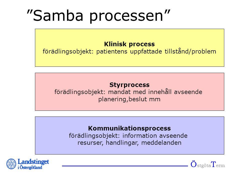 """Ö stgöta T erm """"Samba processen"""" Kommunikationsprocess förädlingsobjekt: information avseende resurser, handlingar, meddelanden Klinisk process förädl"""