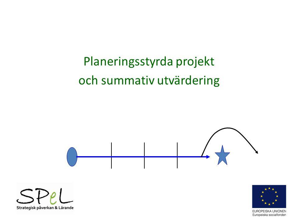 Planeringsstyrda projekt och summativ utvärdering