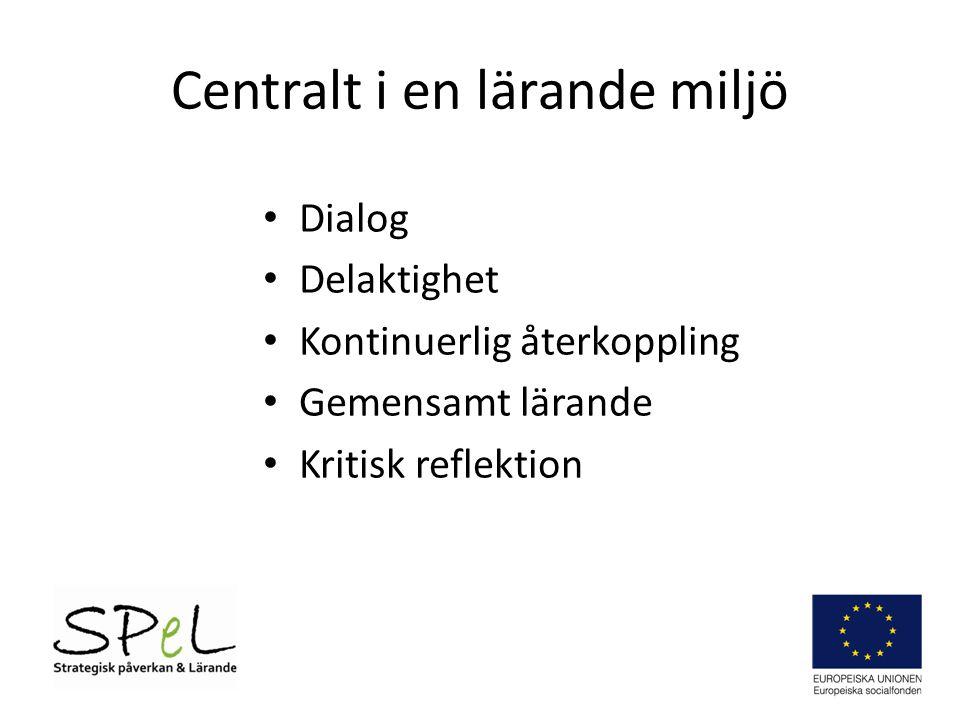 Centralt i en lärande miljö • Dialog • Delaktighet • Kontinuerlig återkoppling • Gemensamt lärande • Kritisk reflektion