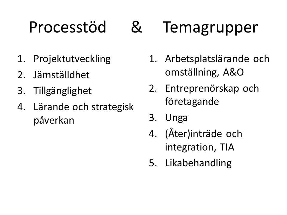 Processtöd & Temagrupper 1.Projektutveckling 2.Jämställdhet 3.Tillgänglighet 4.Lärande och strategisk påverkan 1.Arbetsplatslärande och omställning, A&O 2.Entreprenörskap och företagande 3.Unga 4.(Åter)inträde och integration, TIA 5.Likabehandling